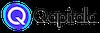 Qapitala logo